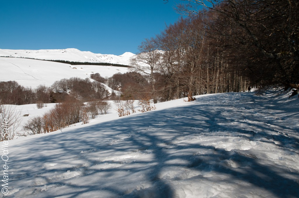 Départ de la randonnée à la Morangie